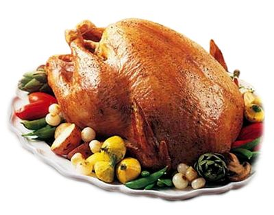 Turkey1-1